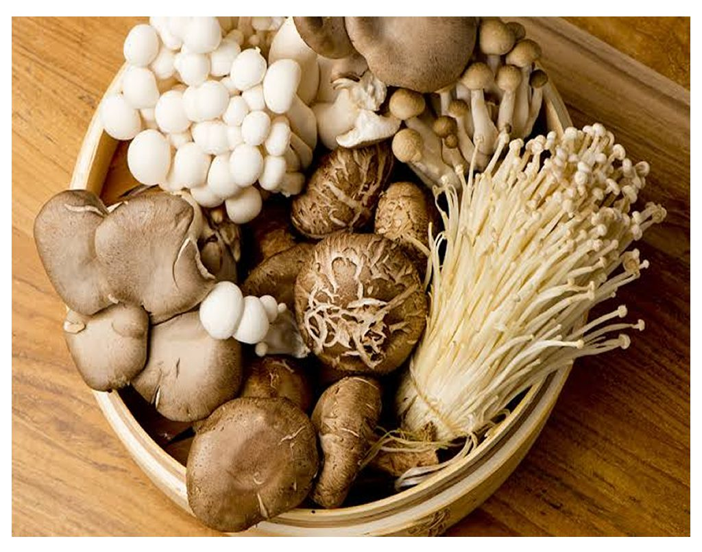 Cooking with Different Types of Mushrooms